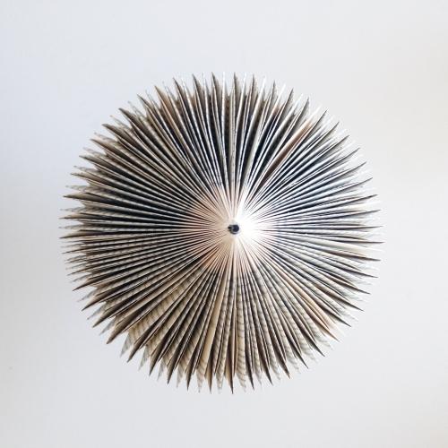 Felix Carmelo | Felix Folding Technique | Small Paper Art