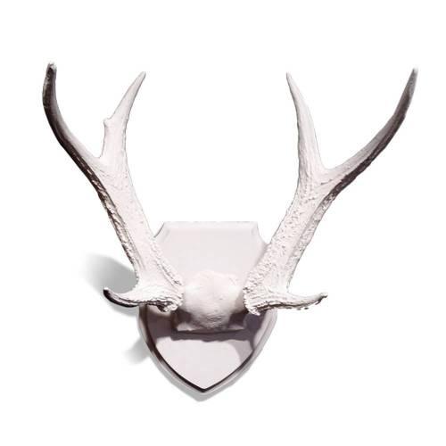 Whitetail Deer Antlers on Medallion