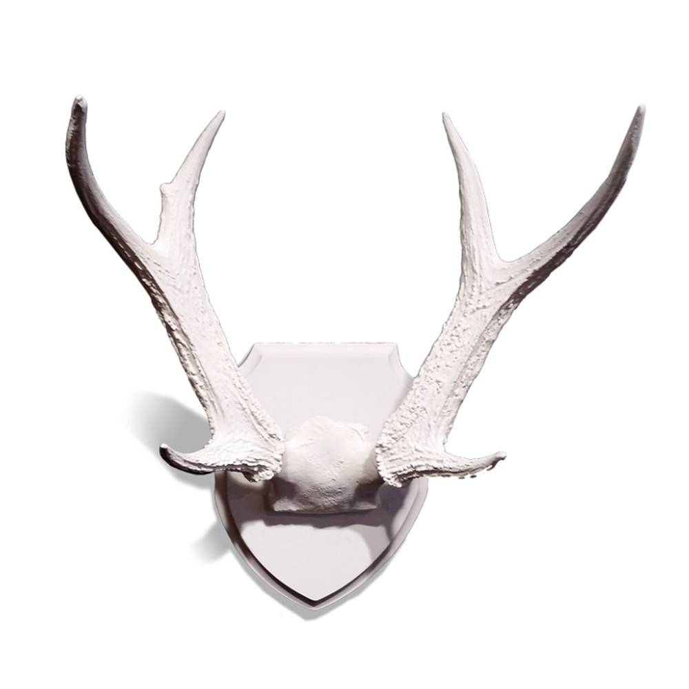 Mesmerizing 60 deer antler wall decor design ideas of faux deer deer antler wall decor deer antlers wall decor for your home amipublicfo Images