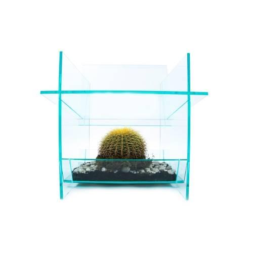 Cactus Chair - Thislexik