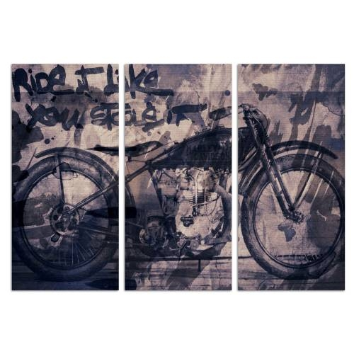 Ride it Triptych | Canvas Art