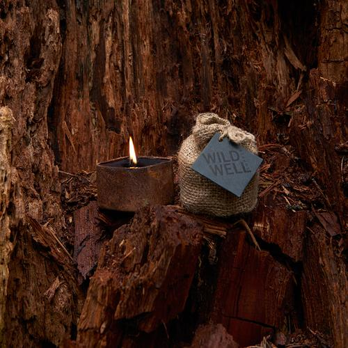 Cargo - Piñon Wood & Exotic Spices| Wild Well Supply Candles