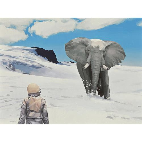 elephant astronaut - photo #29