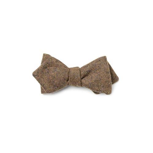 Darwin Bow Tie