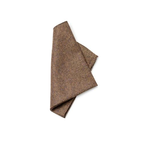 Darwin Pocket Square